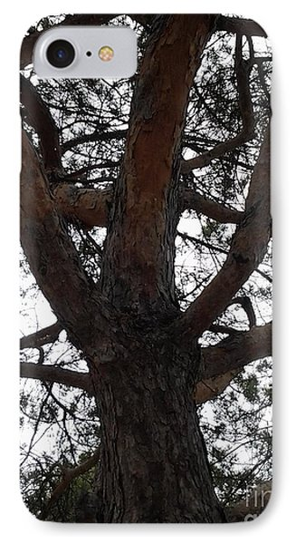 Tree4 IPhone Case by Susan Townsend