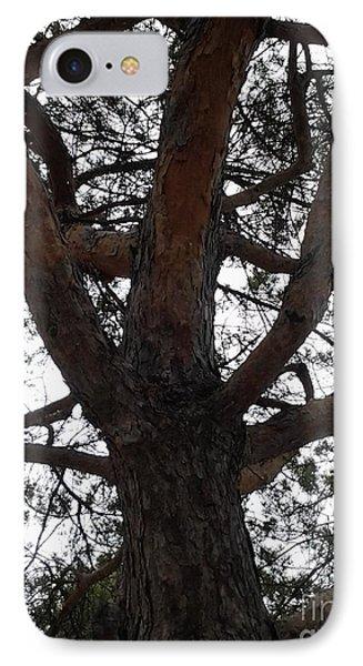 Tree4 IPhone Case