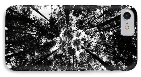 IPhone Case featuring the photograph Trees Above Me by Daniel Woodrum