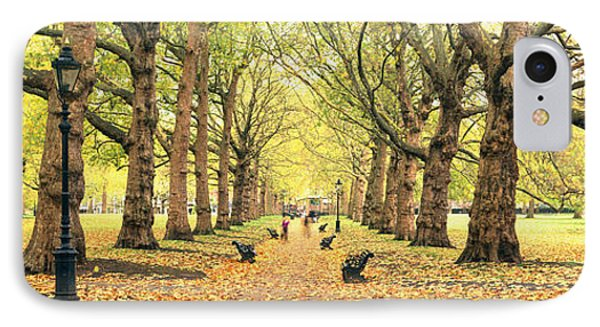 Trees Along A Footpath In A Park, Green IPhone Case by Panoramic Images
