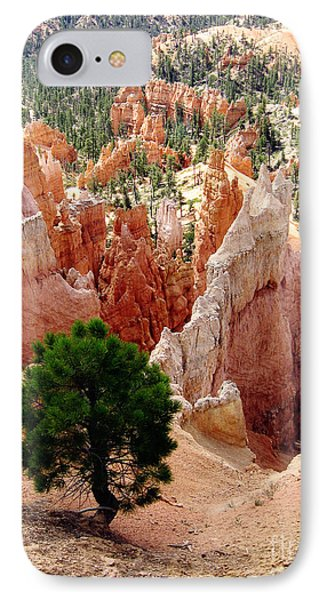 IPhone Case featuring the photograph Tree's Eye View by Meghan at FireBonnet Art
