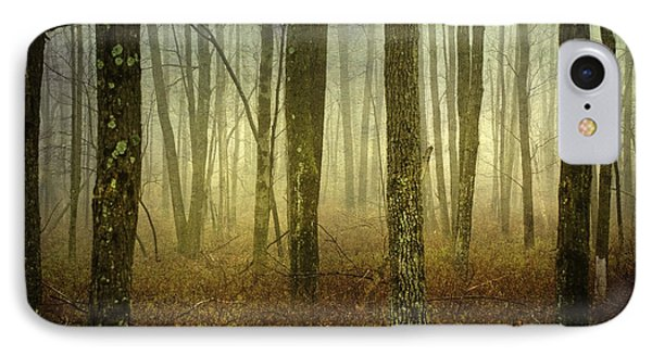 Trees II IPhone Case by Debra Fedchin