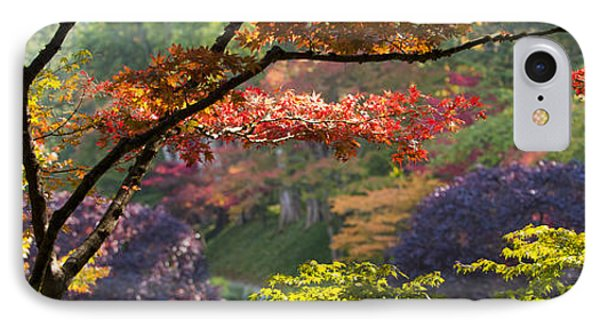 Trees In A Garden Butchart Gardens IPhone Case by Panoramic Images