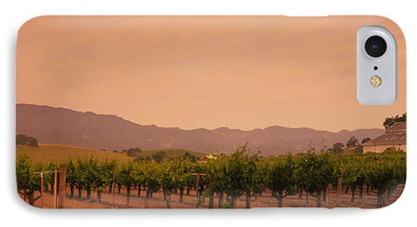 Trees In A Vineyards, Napa Valley IPhone Case by Panoramic Images