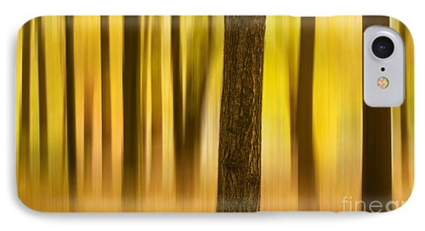 Trees In Autumn Forest IPhone Case by Rima Biswas