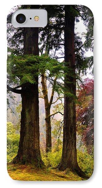 Trees In Autumn Glory. Scotland Phone Case by Jenny Rainbow