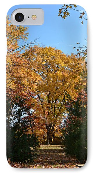 Trees In Fall IPhone Case by Kenneth Cole
