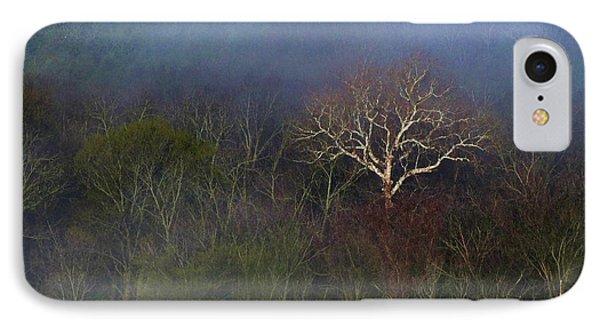 Trees In Fog 4 Phone Case by Dena Kidd