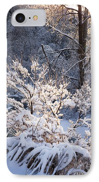 Trees In Forest After Winter Storm IPhone Case