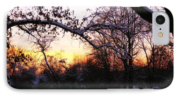 Trees In Wintry Pennsylvania Twilight Phone Case by Anna Lisa Yoder