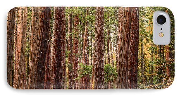 Trees Of Yosemite IPhone Case by Muhie Kanawati