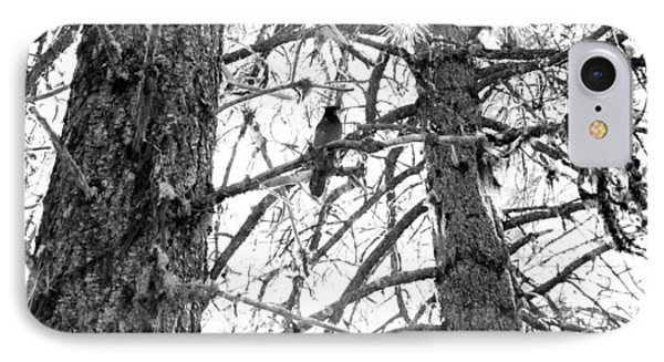 IPhone Case featuring the photograph Trees by Tarey Potter