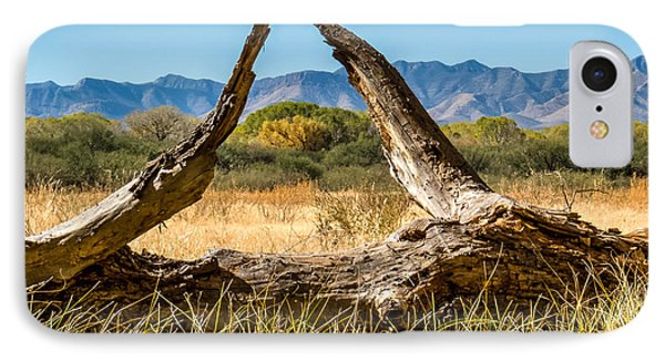 IPhone Case featuring the photograph Triangle by Beverly Parks