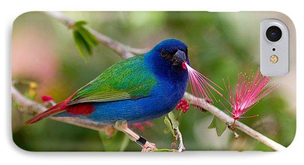 IPhone Case featuring the photograph Tricolor Parrot Finch by Les Palenik