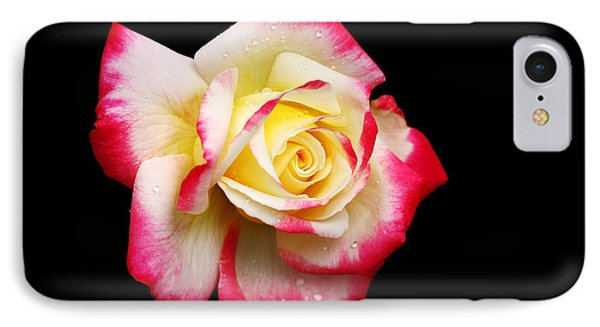 IPhone Case featuring the photograph Tricolour Magesty by Doug Norkum