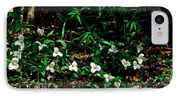Trillium In Morning Sun Phone Case by Michelle Calkins