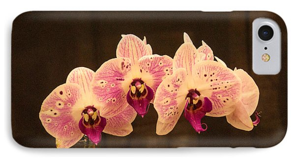 Triple Orchid Arrangement 1 Phone Case by Douglas Barnett
