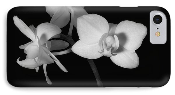IPhone Case featuring the photograph Triplets by Ron White