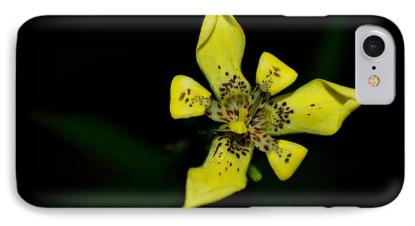 IPhone Case featuring the photograph Tropic Yellow by Miguel Winterpacht