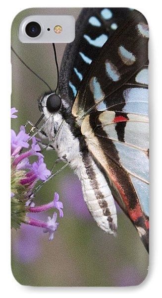 IPhone Case featuring the photograph Tropical Butterfly by Chris Scroggins