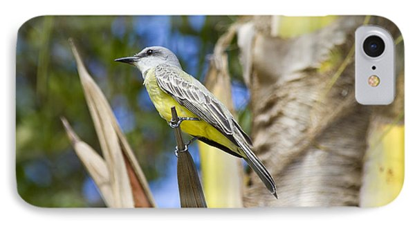 IPhone Case featuring the photograph Tropical Kingbird by Teresa Zieba
