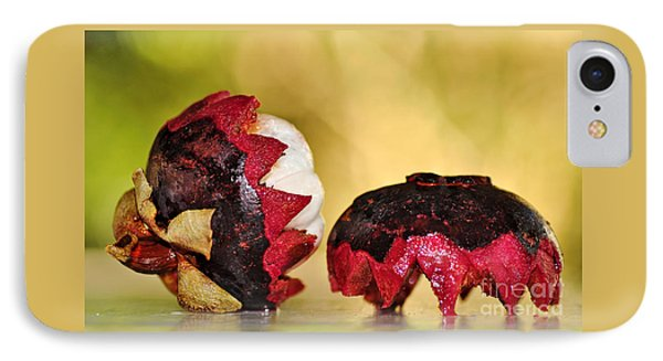 Tropical Mangosteen Phone Case by Kaye Menner