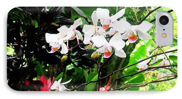 Tropical Orchids Phone Case by Tina M Wenger