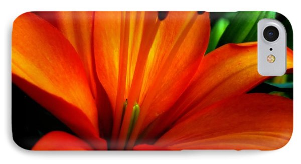 Tropical Passion Phone Case by Karen Wiles