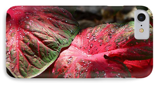 Tropical Rain - Botanical Art By Sharon Cummings IPhone Case by Sharon Cummings