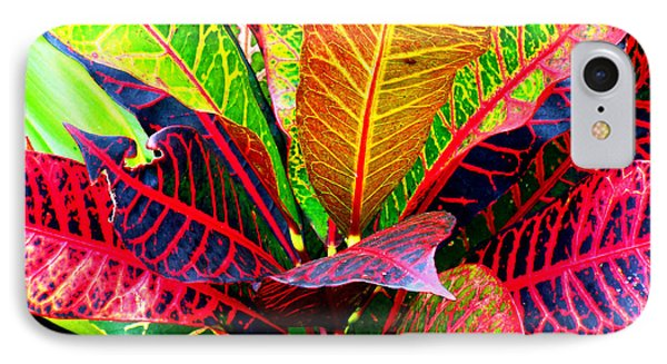 Tropicals Gone Wild Naturally IPhone Case by David Lawson