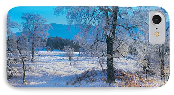 Trossachs National Park, Scotland IPhone Case