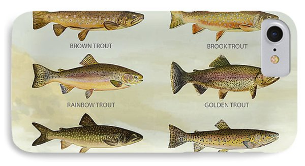 Trout Species IPhone Case by Aged Pixel