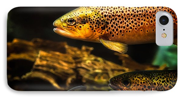 Trout Swiming In A River IPhone Case by Bob Orsillo