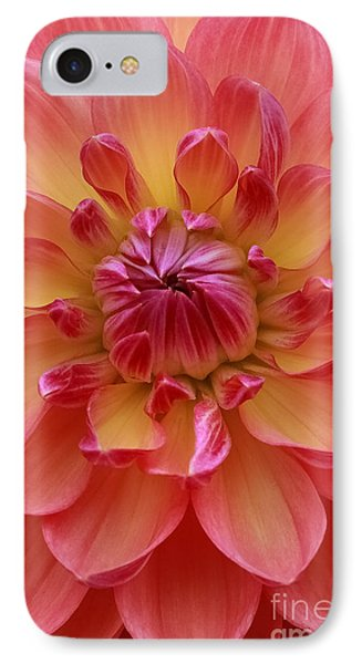 True Beauty IPhone Case