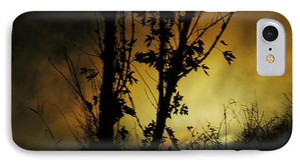 Trunks Of Trees IPhone Case