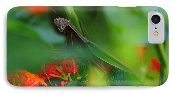 Trying To Hide Praying Mantis Phone Case by Raymond Salani III