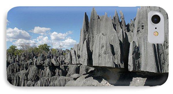 Tsingy De Bemaraha Madagascar 2 Phone Case by Rudi Prott