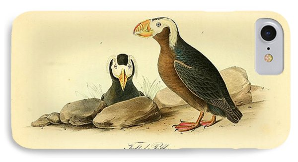 Tufted Puffins Phone Case by Philip Ralley