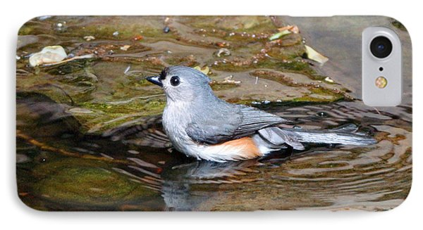Tufted Titmouse In Pond II Phone Case by Sandy Keeton