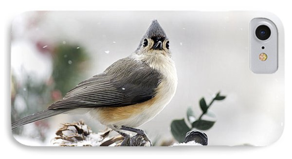 Tufted Titmouse In The Snow Phone Case by Christina Rollo