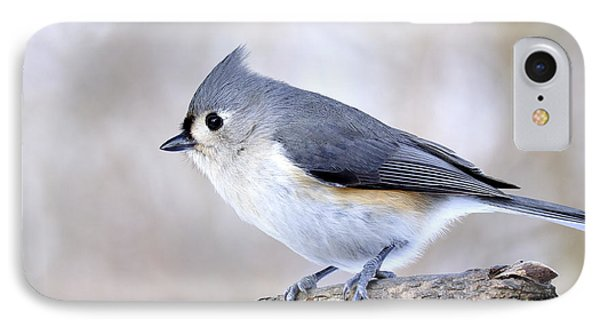 Tufted Titmouse On Dogwood 3 IPhone Case by Thomas R Fletcher