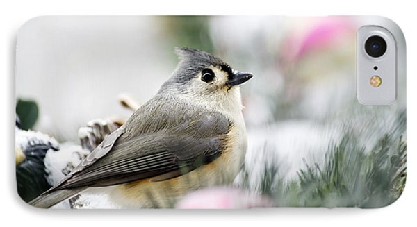 Tufted Titmouse Portrait IPhone Case by Christina Rollo