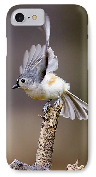 Tufted Titmouse Takeoff IPhone Case by David Lester