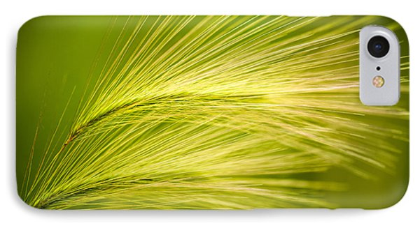 Tufts Of Ornamental Grass Phone Case by  Onyonet  Photo Studios