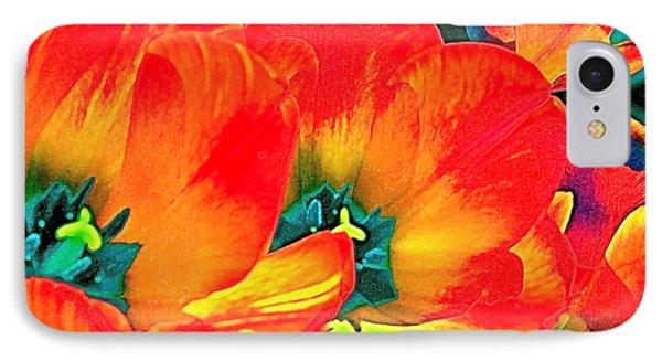 Tulip 1 IPhone Case by Pamela Cooper