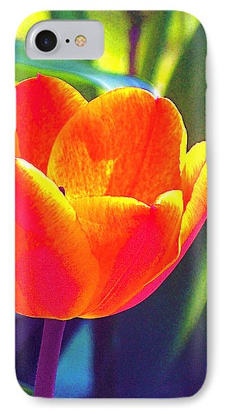IPhone Case featuring the photograph Tulip 2 by Pamela Cooper