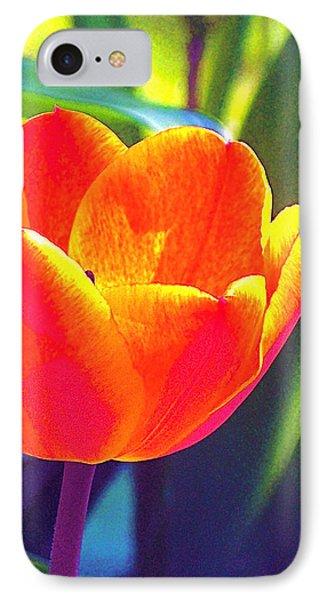 Tulip 2 IPhone Case by Pamela Cooper