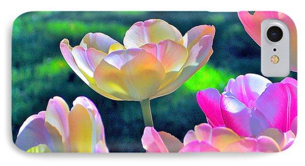 Tulip 21 IPhone Case by Pamela Cooper
