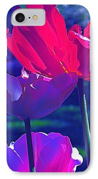 Tulip 3 IPhone Case by Pamela Cooper