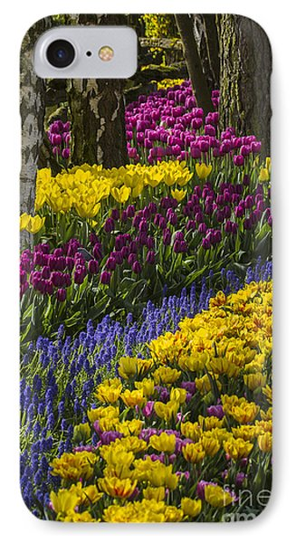 Tulip Beds IPhone Case by Sonya Lang
